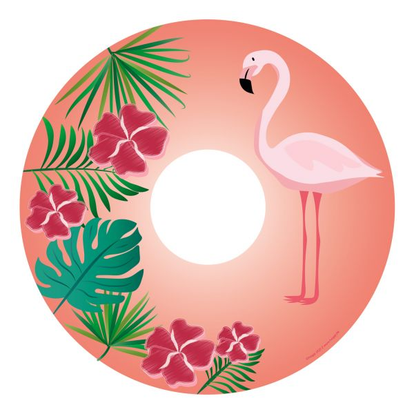 flamina_flamingo